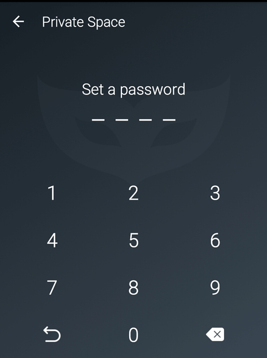 new-set-password-private-space